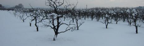… la neve …