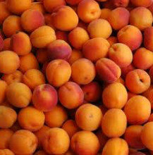 Apricots in Moscato grappa