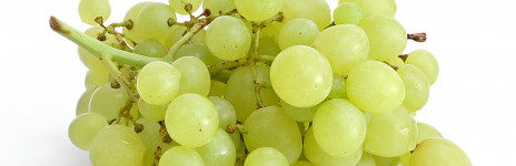 Fresh grapes in syrup