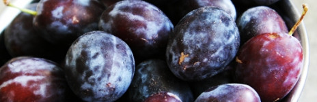 Fresh Plums in Moscato Grappa