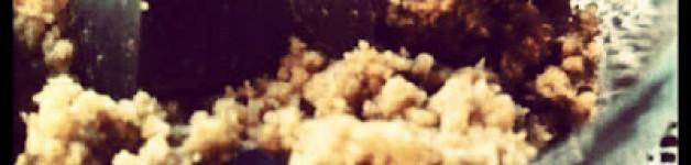 Mousse croccante di Yougurt greco e Miele di Castagno