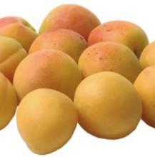 Apricot and Amaretti purée