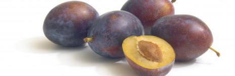 Composta di Prugne senza zucchero g. 345 Prunotto